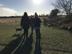 January Essex Business Netwalking, Colchester, Ruthy Doolittle