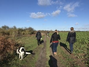Business Netwalking, Colchester, Essex, Ruthy Doolittle