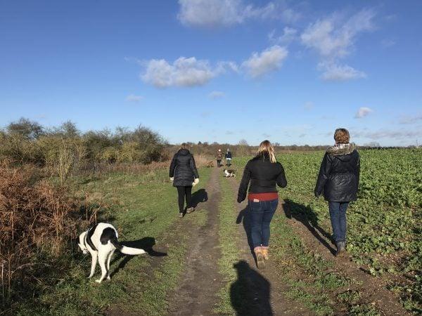 Netwalking, Colchester, Essex, Ruthy Doolittle