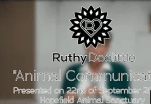 Ruthy Doolittle Talk on Animal Communication and Holistic Animal Care