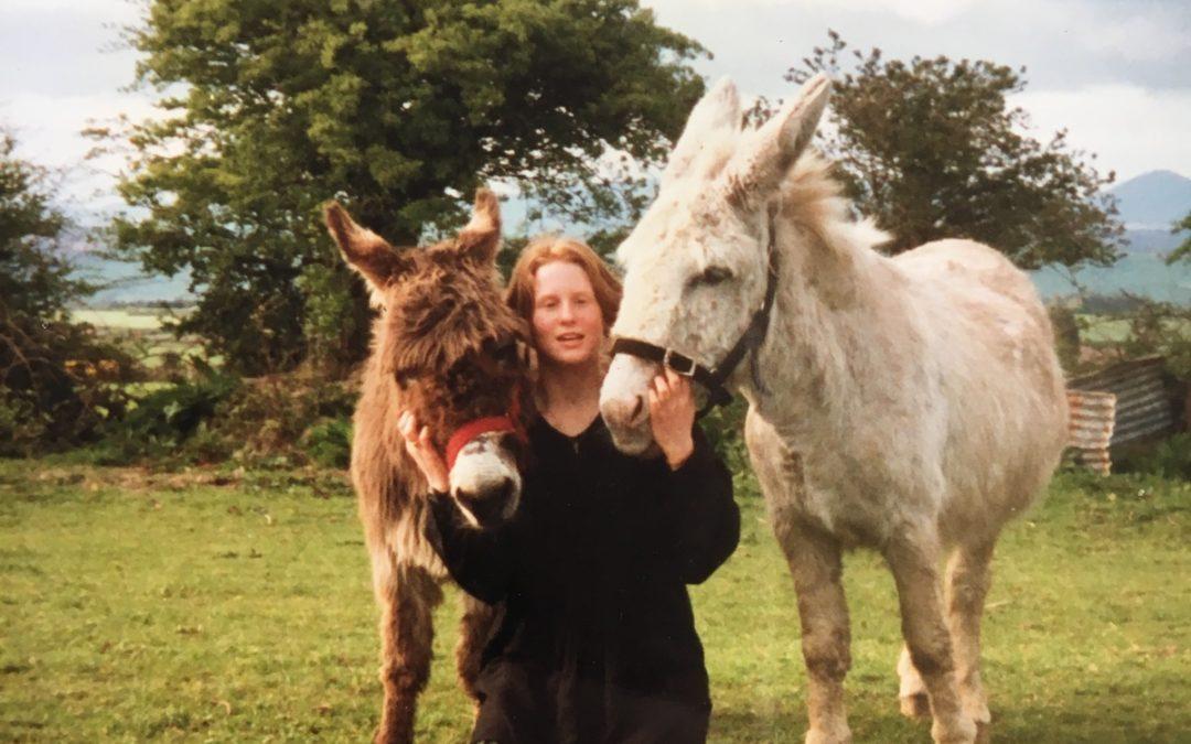 Donkeys with Ruth Bradshaw
